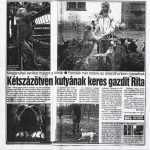 Kétszázötven kutyának keres gazdit Rita
