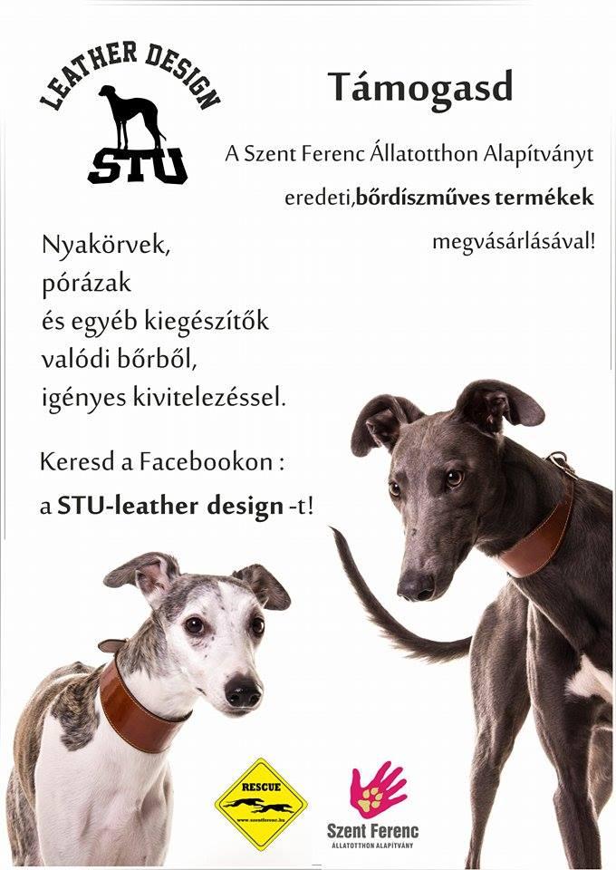 stu_nyakorv2