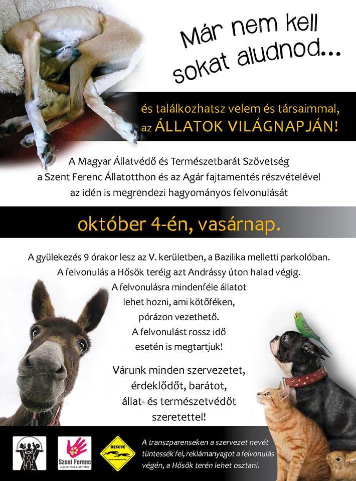 allatok_vilagnapja_plakat